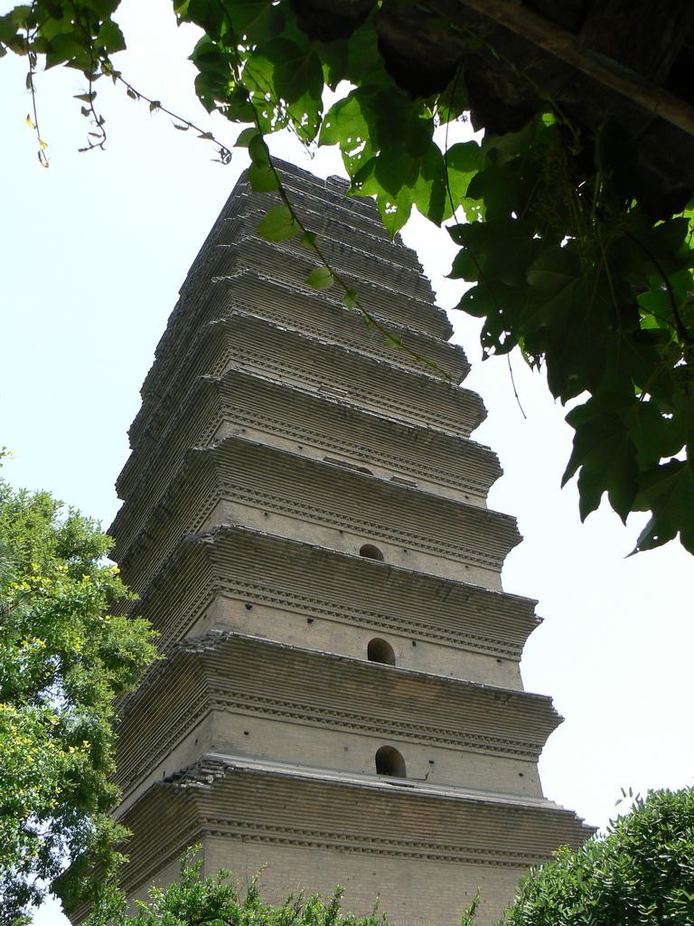 little wild goose pagoda