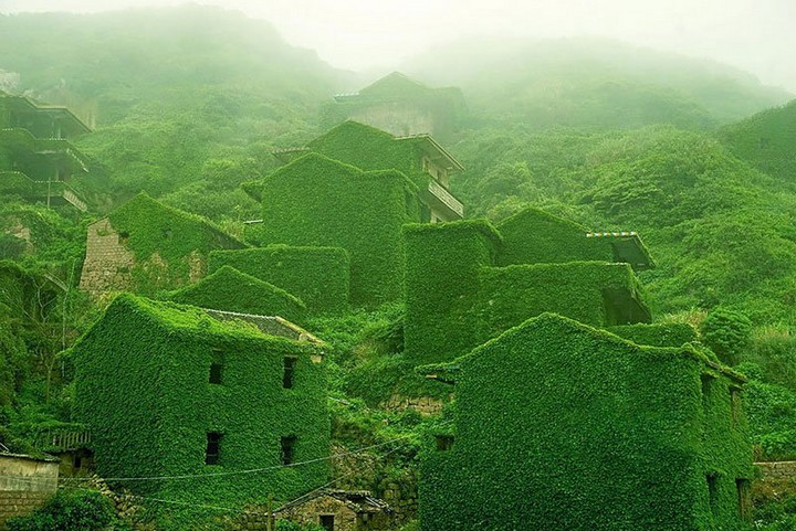 abandoned village overtaken by nature