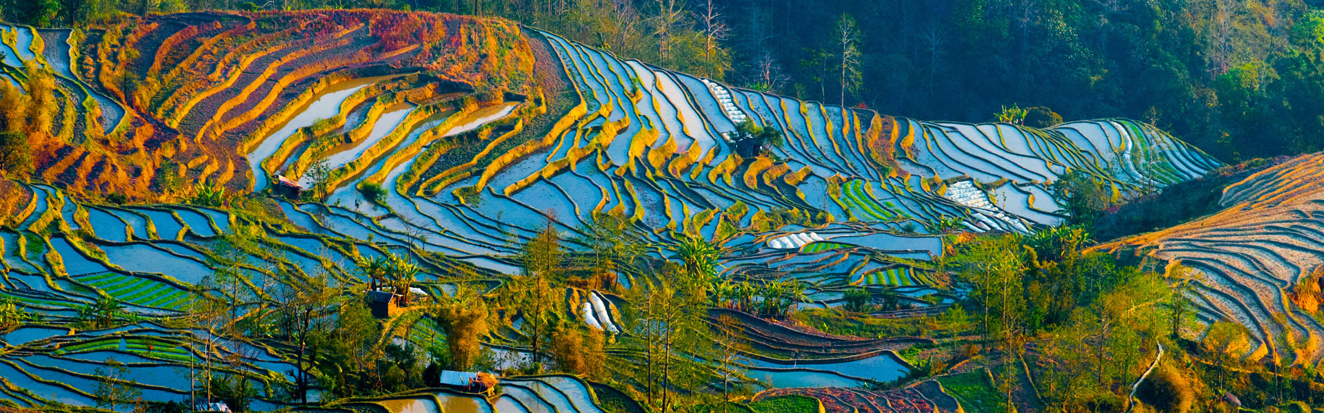 yuangyang rice terraces in China