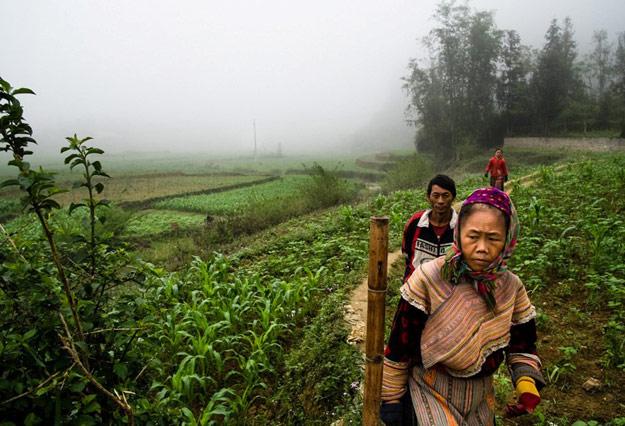 Sapa in Vietnam