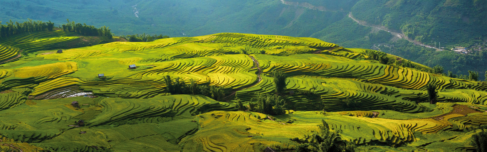 Top 10 Sports to try in Vietnam   Wendy Wu Tours Blog