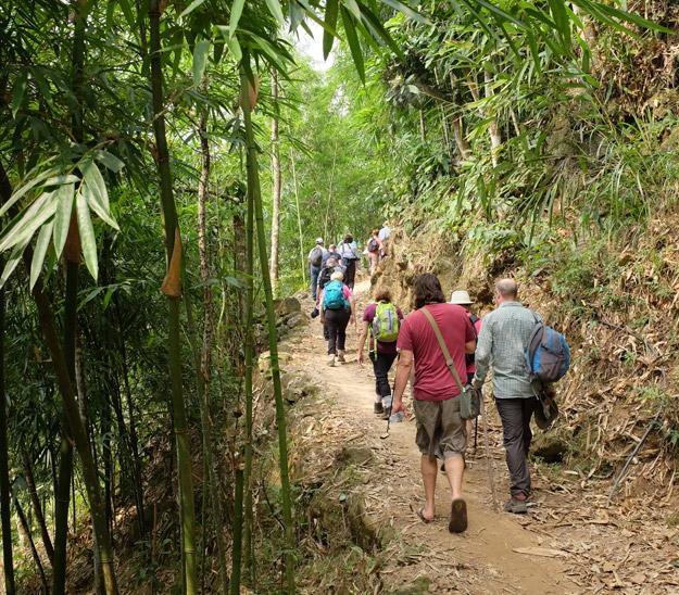 more trekking