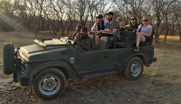 ranthambore safari jeep