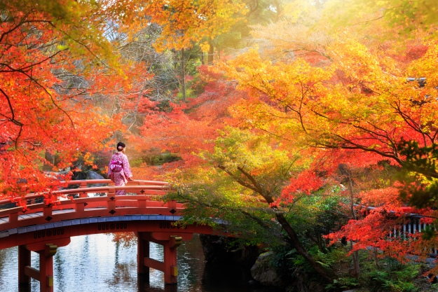 Japan in the Autumn