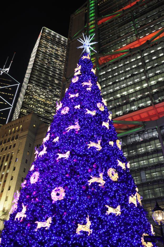Christmas Tree in Hong Kong