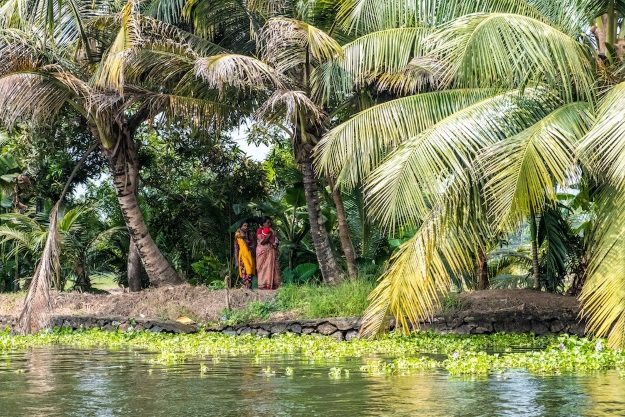 Local life on Kerala's backwaters