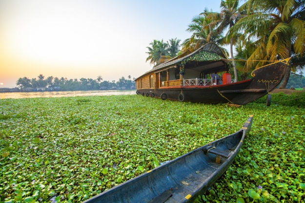Boats on Kerala Backwaters