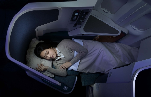 Woman asleep on a plane