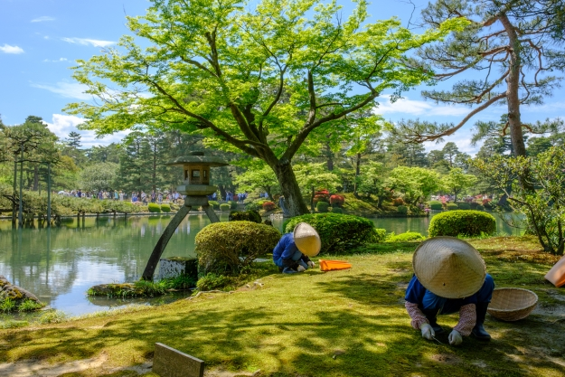 Gardeners at work in a traditional Japanese garden