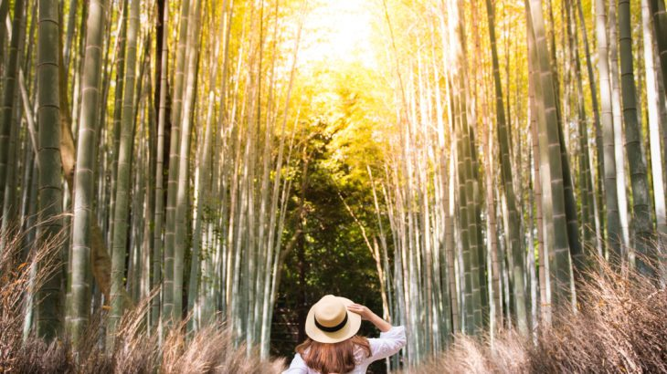 Woman in bamboo forest in Kyoto