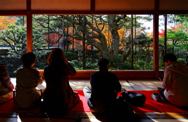 Tourists enjoying a tea ceremony looking over an autumnal garden