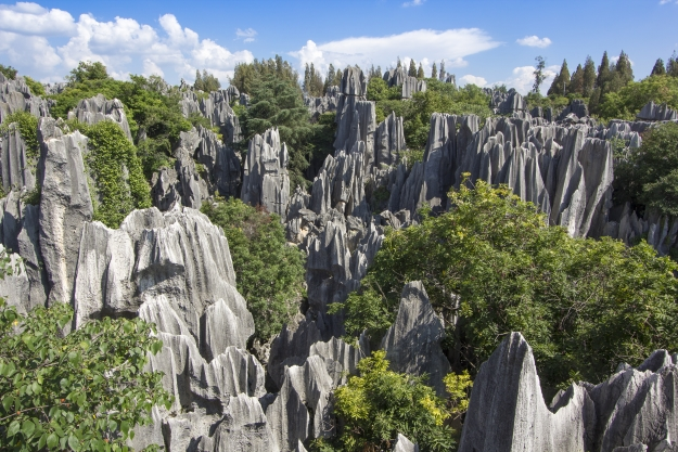 The 'trees' of the Stone Forest, near Kunming