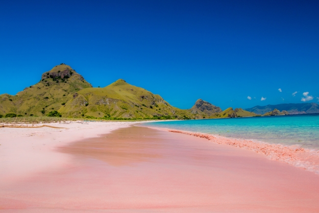 The pink beaches of Flores, Komodo National Park