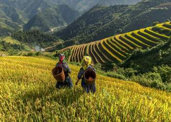 Active Vietnam Tours