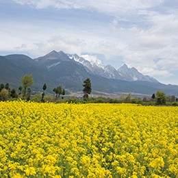 Discover Yunnan tour