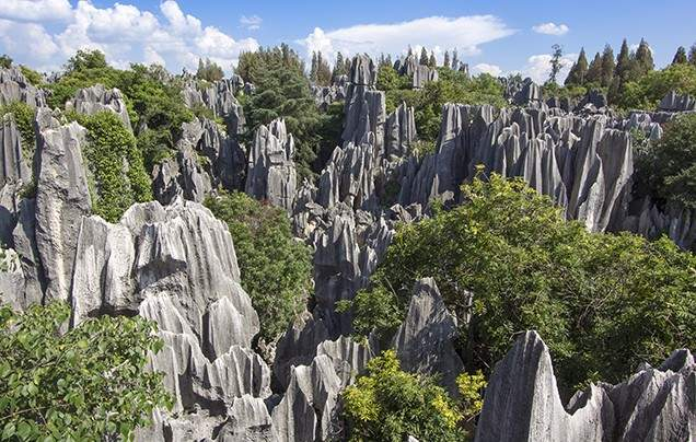 Day 17 Stone Forest - Fly to Guilin