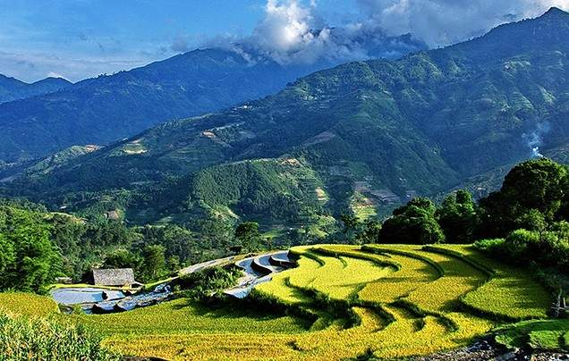 Day 6 Trek through Sapa's ricefields