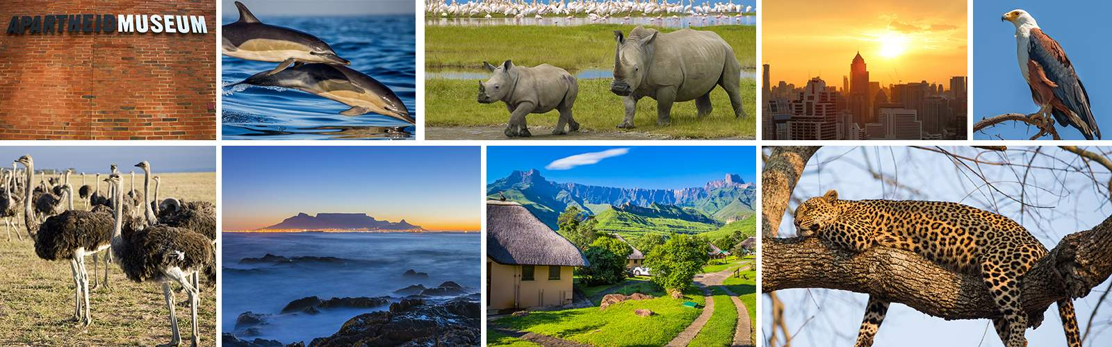 Wendy Wu Tours South Africa Holidays