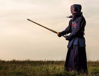 Have a go at Kendo