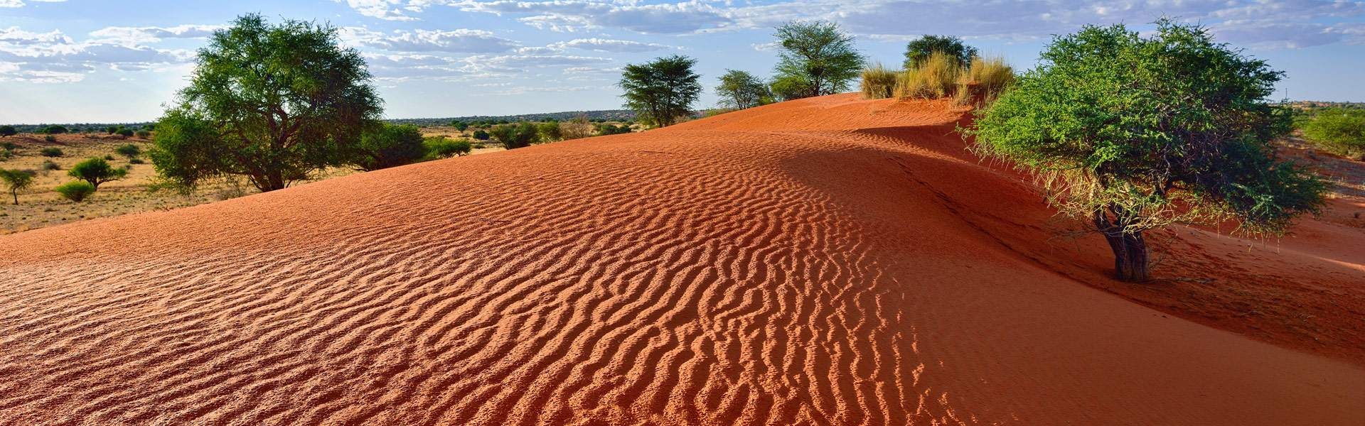 Namibia: Wildlife & Wilderness Tour | Wendy Wu Tours