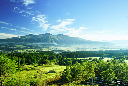 Japan & the Scenic South