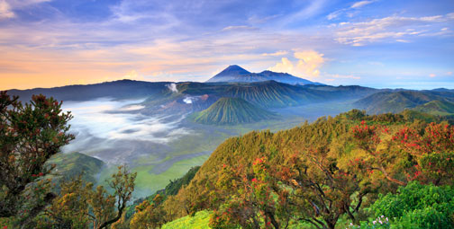 Immerse yourself in Indonesia