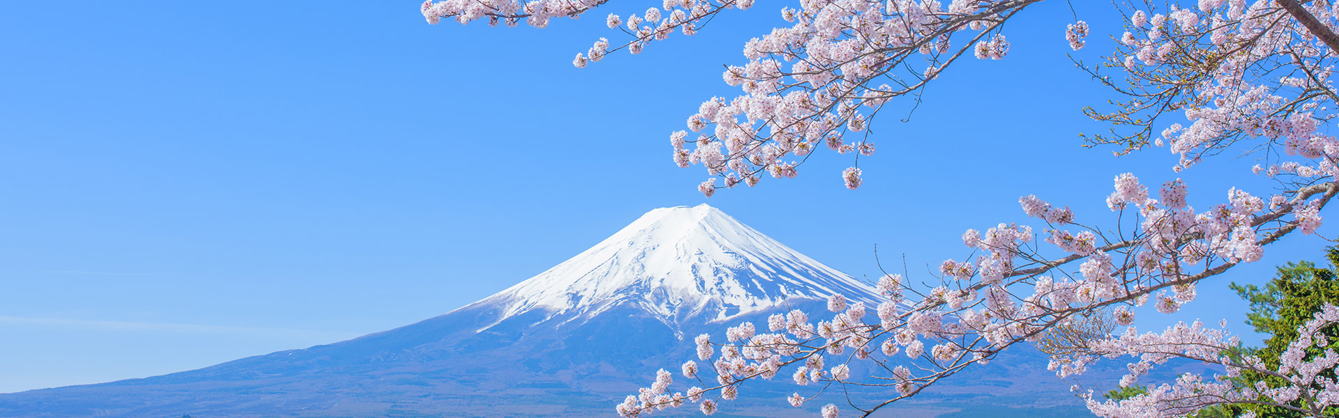 Business Class Upgrade to Japan&nbsp;-&nbsp;<strong>from</strong>&nbsp;£99