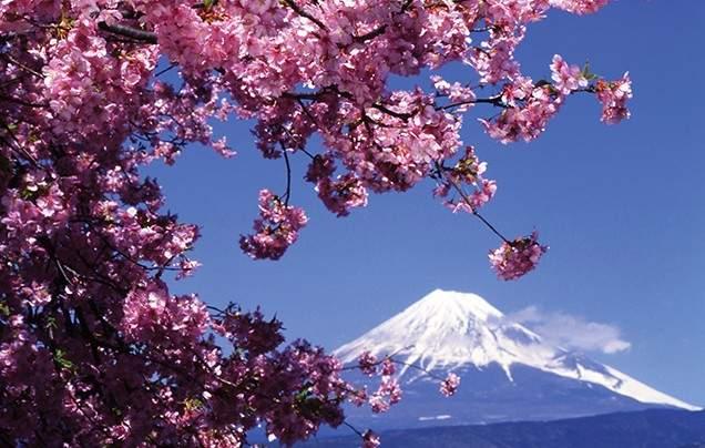 Day 6 Mt Fuji