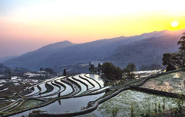 DAY 14 YUANYANG RICE TERRACES