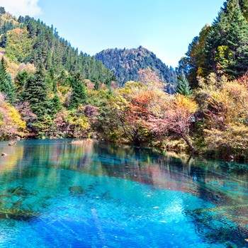 Yunnan & Sichuan tour