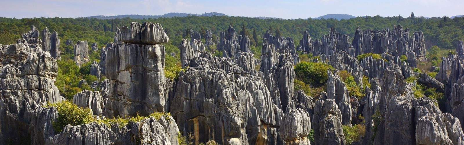 Stone Forest Holidays