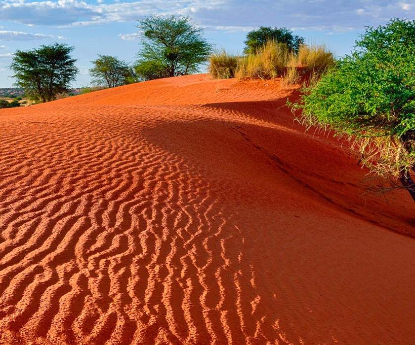 Namibia: Wildlife & Wilderness tour
